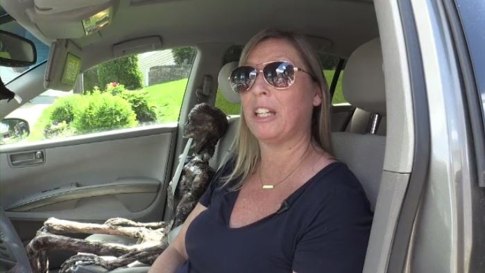 N.B. woman's 'silly Halloween thing' mistaken for body in car