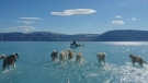 Greenland photo shows 'unusual event'