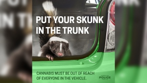 Poster from Edmonton police educating drivers on transporting cannabis. (Source: Edmonton police)