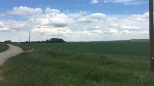 A three-year-old boy died Tuesday afternoon after being run over on a rural property southwest of Fort Macleod