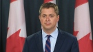 Andrew Scheer reacts to TMX announcement