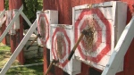 World Knife and Tomahawk throwing championships