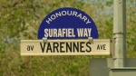 Honorary street name where boy killed at crosswalk
