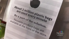 Teen asks shoppers not to use single use bags