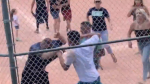 baseball brawl