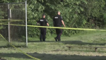 Police investigate stabbing at Jesse Davidson Park in London Ont, on Tuesday June 18, 2019. (CTV London)