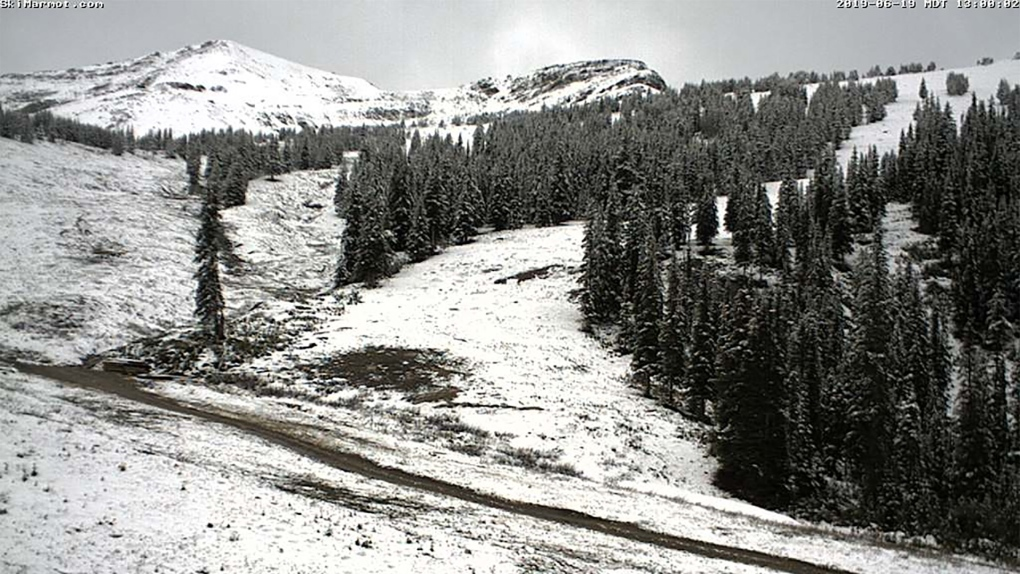 Snow in June: Parts of Jasper National Park hit by late spring snowstorm