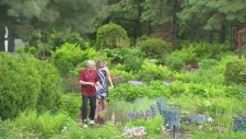 Tips from a senior gardener