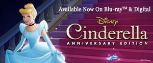 Cinderella: Anniversary Edition Rotator