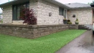 A Scarborough homeowner is fighting to keep her artificial lawn after bylaw officers told her she had to remove it.