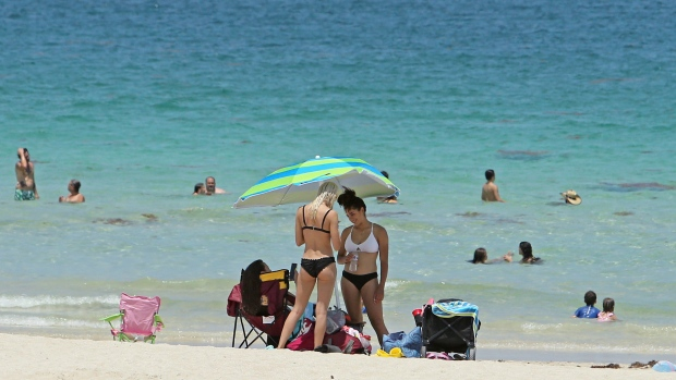 Some Miami Beach residents fed up with smelly seaweed | CTV News
