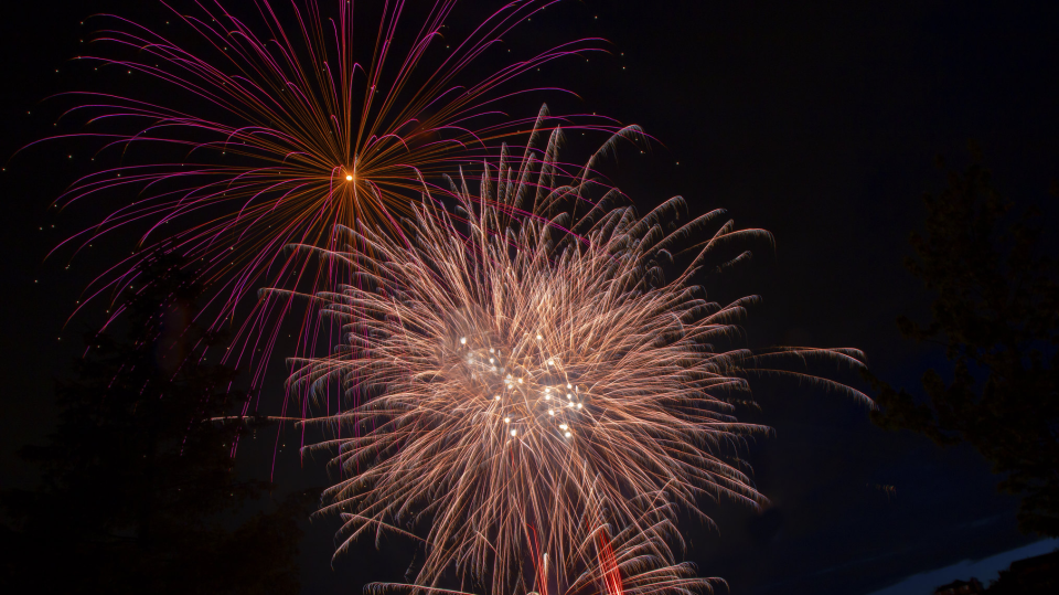 A photo from Port Coquitlam's Flikr page shows the 2018 fireworks.