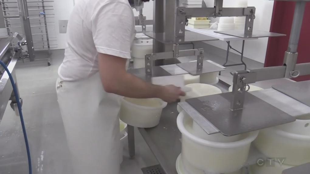 Stonetown Artisan Cheese and Saputo receive combined $2m funding