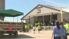 Devastated by fire, Jobin Family Farm now has cause for celebration
