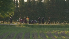 Emergency response to fatal collision near Listowel