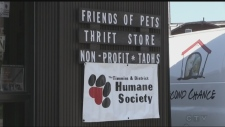 A new thrift and consignment shop has opened in South Porcupine to raise money for Timmins and District Humane Society. (Lydia Chubak/CTV Northern Ontario)