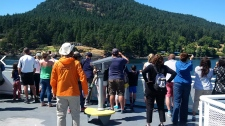 Coastal Naturalists will be on location to tell stories and talk about the wildlife that can be seen from the ferry as part of a special offer on Canada Day long weekend. (BCFerries.com)