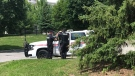 Emergency crews respond to reports of an assault in a wooded area in Aurora on June 24, 2019.