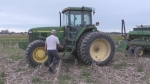 Abundant rain could leave fields empty this year
