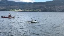 Plane crash in Okanagan Lake