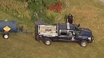 Police, COS hunting for 'aggressive' black bear