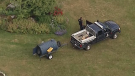 Trap set near SFU for 'aggressive' black bear