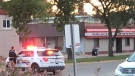 The suspect hit two employees with the gun, took cash and cigarettes, and then ran away. (Source: Dauphin Herald)