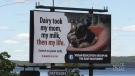 These billboards have been popping up in the Maritimes. The group behind them says the goal isn't to insult farmers, but to encourage a vegan lifestyle.