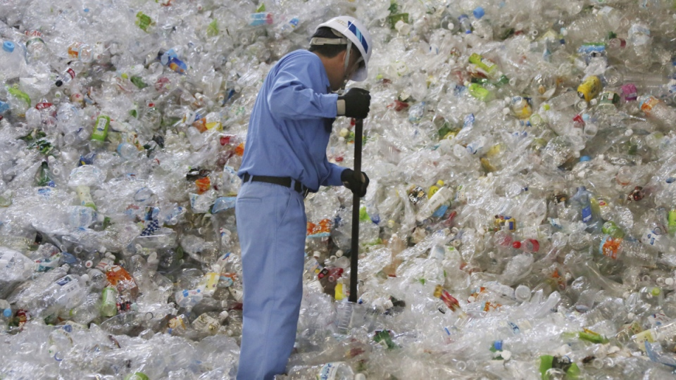 Working at Tokyo Petbottle Recycle Co.