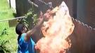 Woman allegedly firebombs neighbour's house