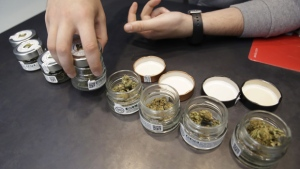 A shop assistant opens jars of cannabis buds at a cannabis light store in Milan, Italy, on June 6, 2019. (Luca Bruno / AP)