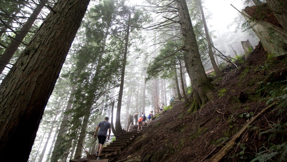 Grouse Grind hiking trail