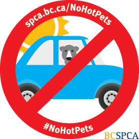The decal that the BC SPCA will be giving out as part of its NoHotPets campaign. (BC SPCA)