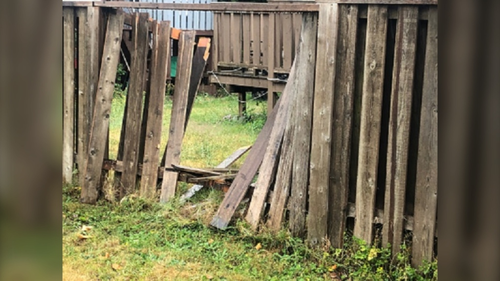 Campbell River fence damage