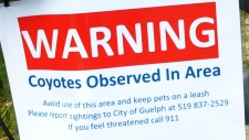 Park shut down for coyote sightings