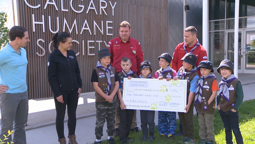 East Glenmore, Beaver Scouts, Humane Society