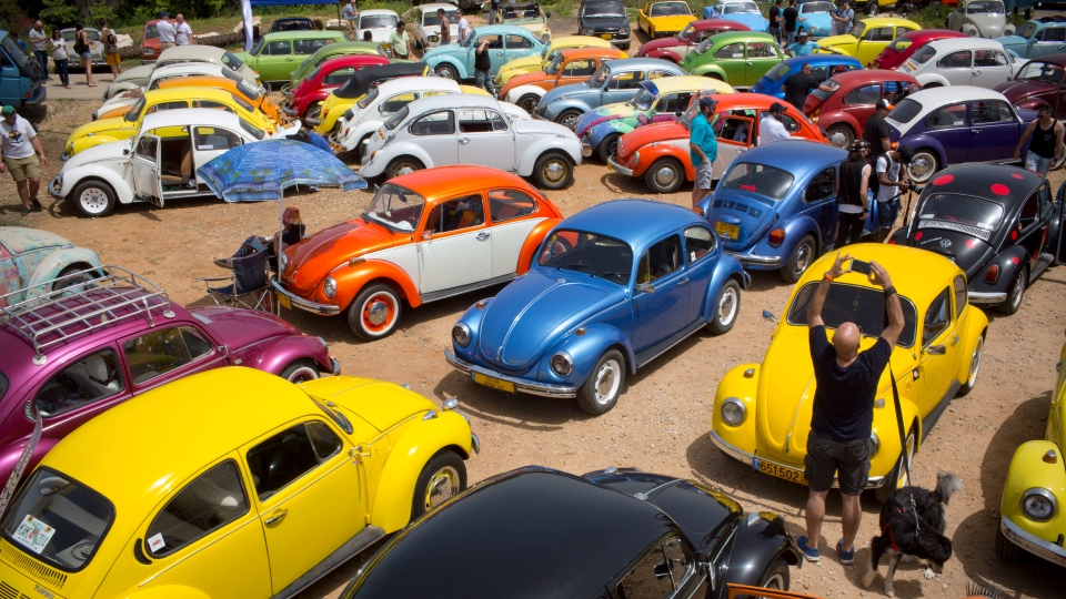 "FILE - In this April 21, 2017 file photo, Volkswagen Beetles are displayed during the annual gathering of the ""Beetle club"" in Yakum, central Israel. (AP Photo/Oded Balilty, file)"