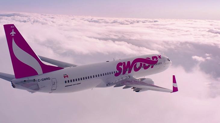 Swoop airline