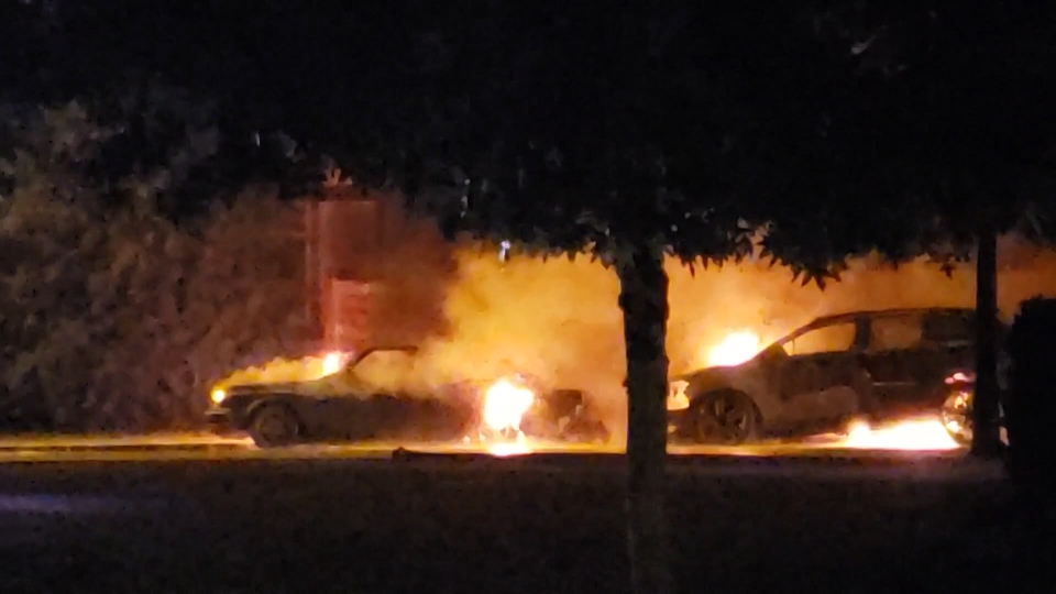 Neighbours caught footage of cars on fire in Port Coquitlam early in the morning of July 11, 2019.