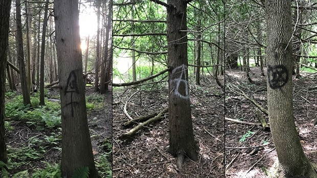 Tagged trees