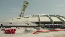 The Vans Park series Pro tour, Olympic stadium