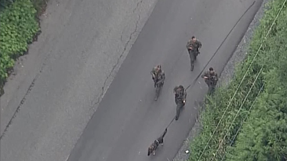 Officers with rifles could be seen making their way through a wooded area, accompanied by canine units. (CTV)