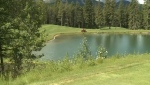 Crowsnest, Pass, golf, course