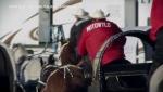 Calgary Stampede, Rangeland Derby, Motowylo, horse