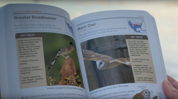 Birdwatching backpack