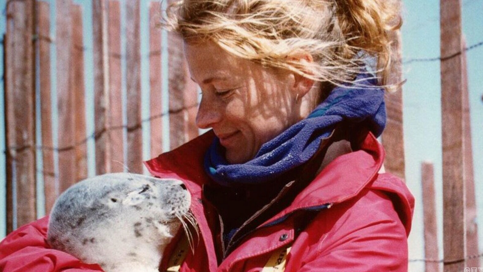 Dr. Sara Iverson cuddles a seal in this undated photo.