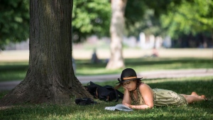 People enjoy the hot weather at Trinity Bellwoods Park, in Toronto, Monday, June 20, 2016. Just looking out the window at a park could help lower cravings for alcohol, cigarettes, junk food and more, according to the implications of a new U.K. study. (THE CANADIAN PRESS/Eduardo Lima)