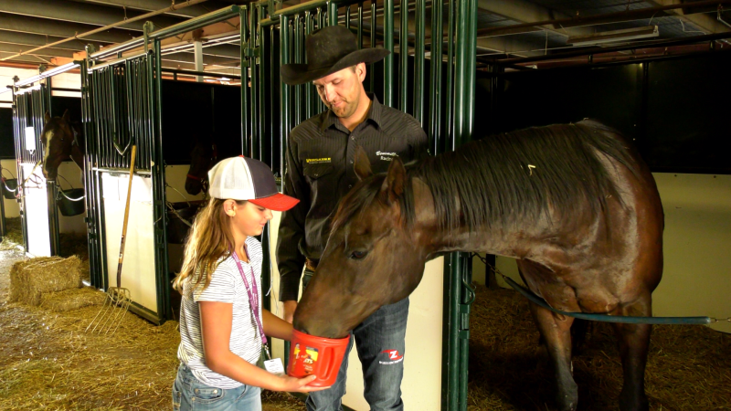 Kurt Bensmiller and his daughter Harlee are feeding his horses based on their food sensitivities.