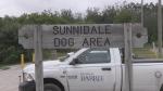 Sunnidale dog park