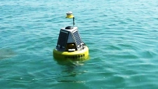 CTV Windsor: Buoy pilot project